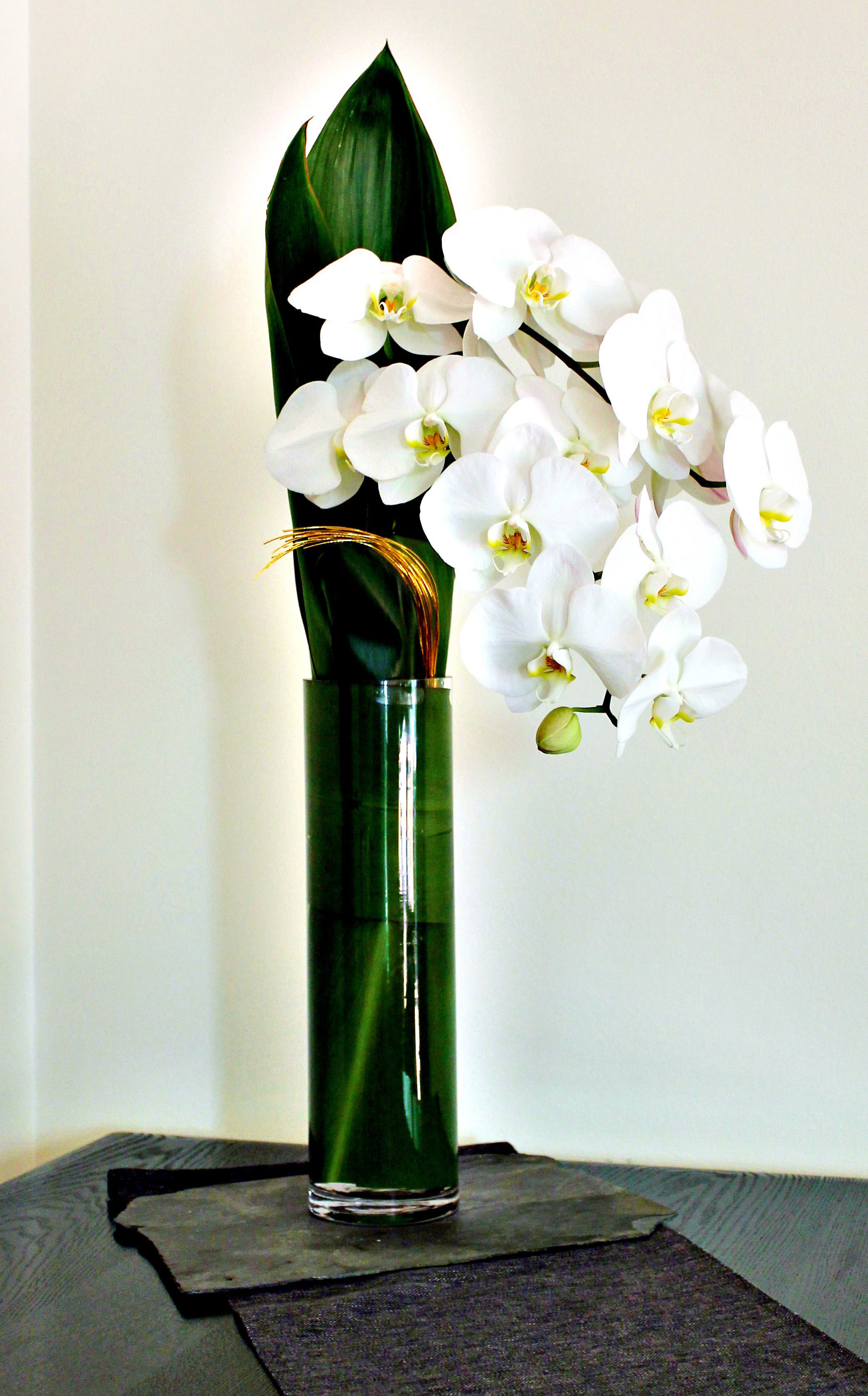 Modern Ikebana in a glass vase